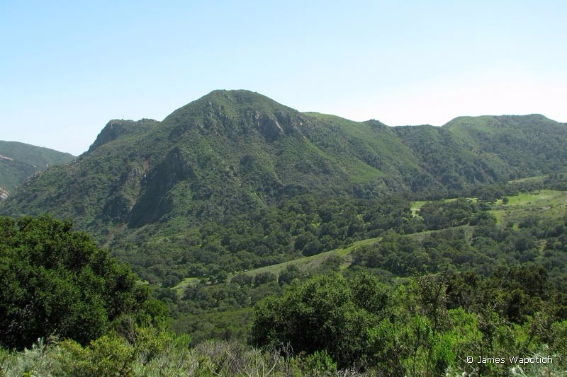 view-from-las-cruces-trail