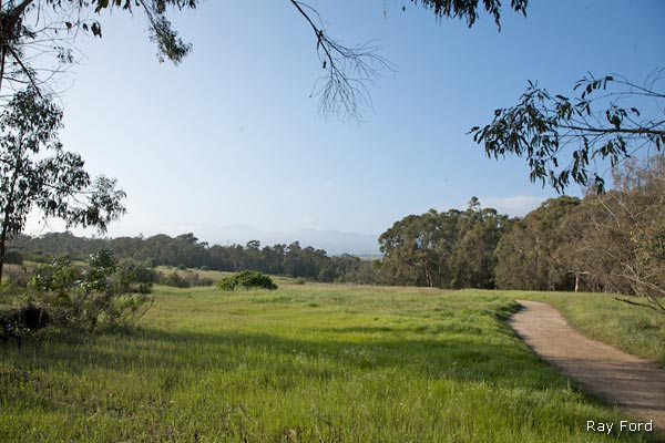 ellwood-mesa-trails-2