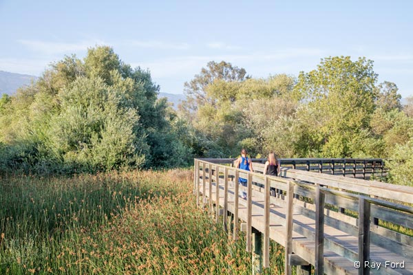 lake-los-carneros-walk
