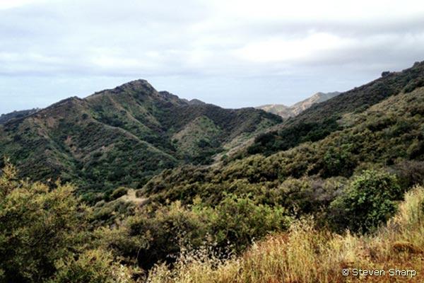 baron-ranch-trail