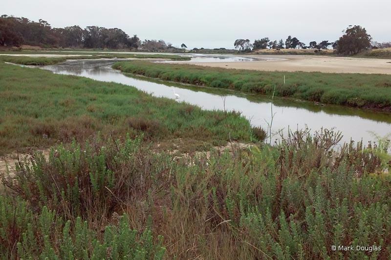 pond-dune-trail-1