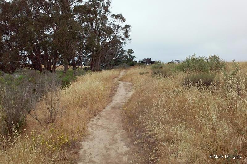 pond-dune-trail-4