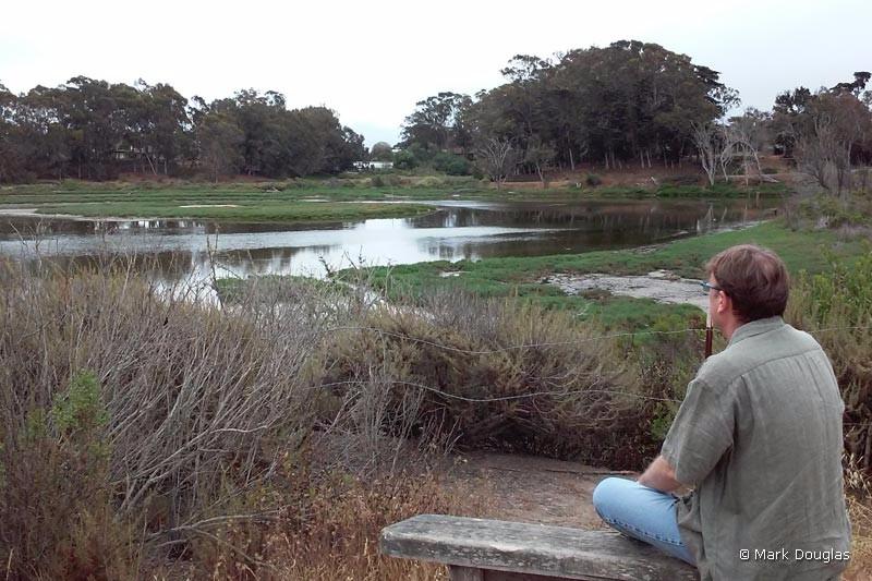 pond-dune-trail-5