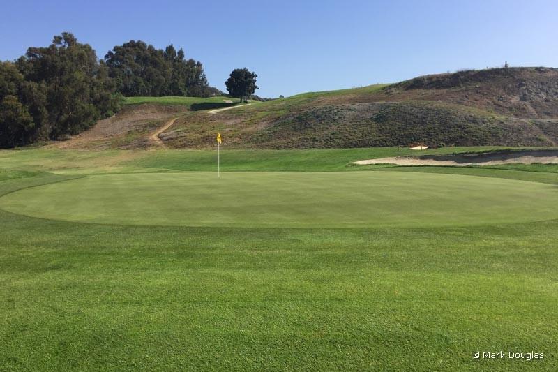 sandpiper-golfing