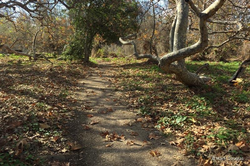 el-cap-nature-trail-3